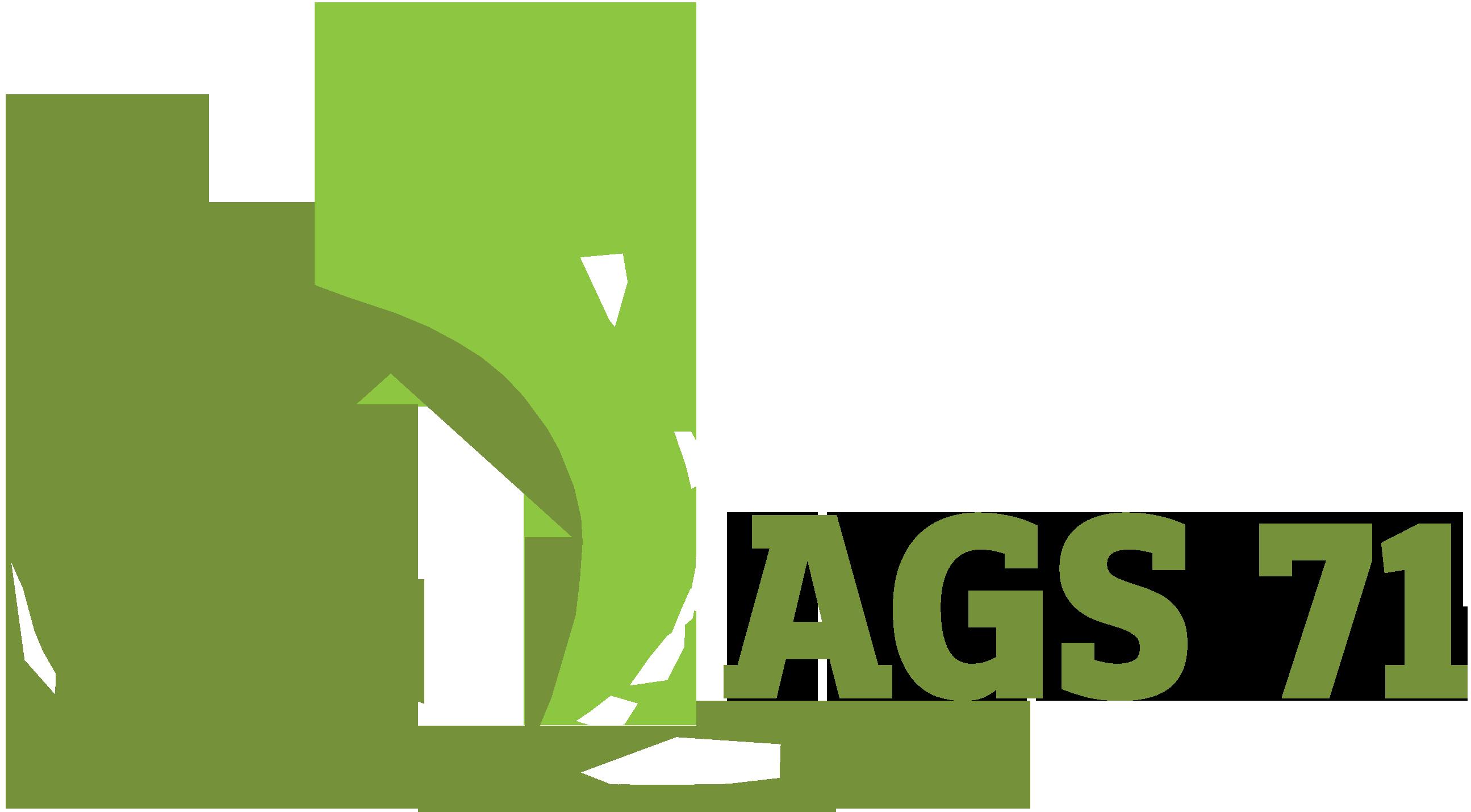Ags71 - Svijet elektronike